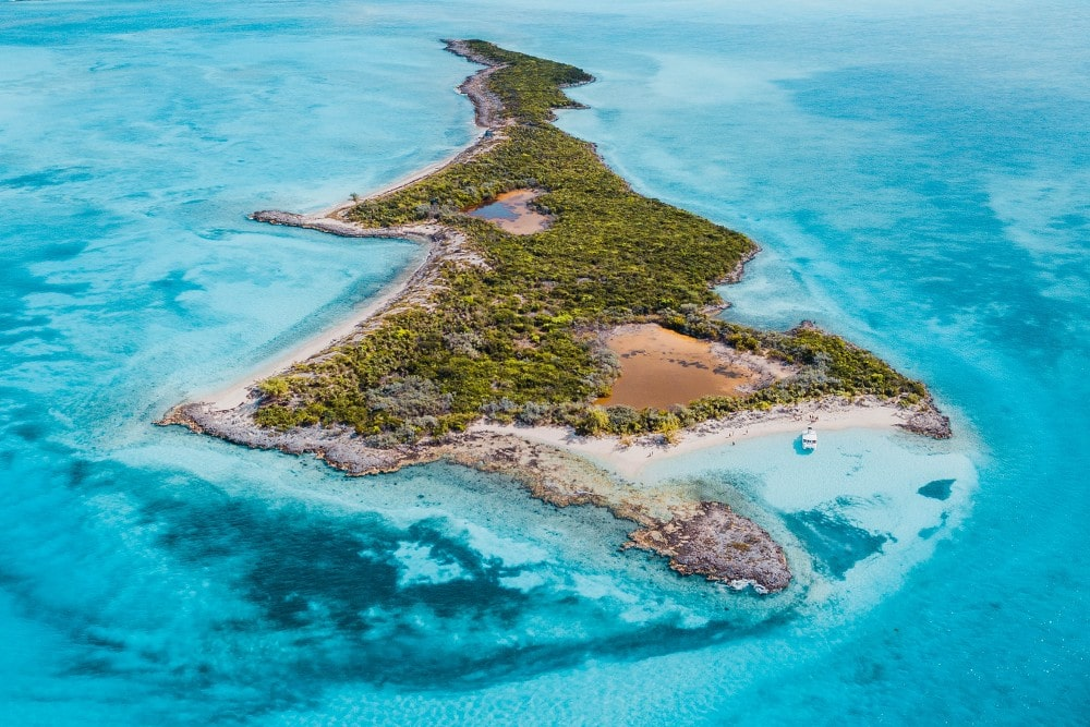 Pig Beach Exuma | TripAdvisor's #1 Swimming Pigs Tour in the Bahamas